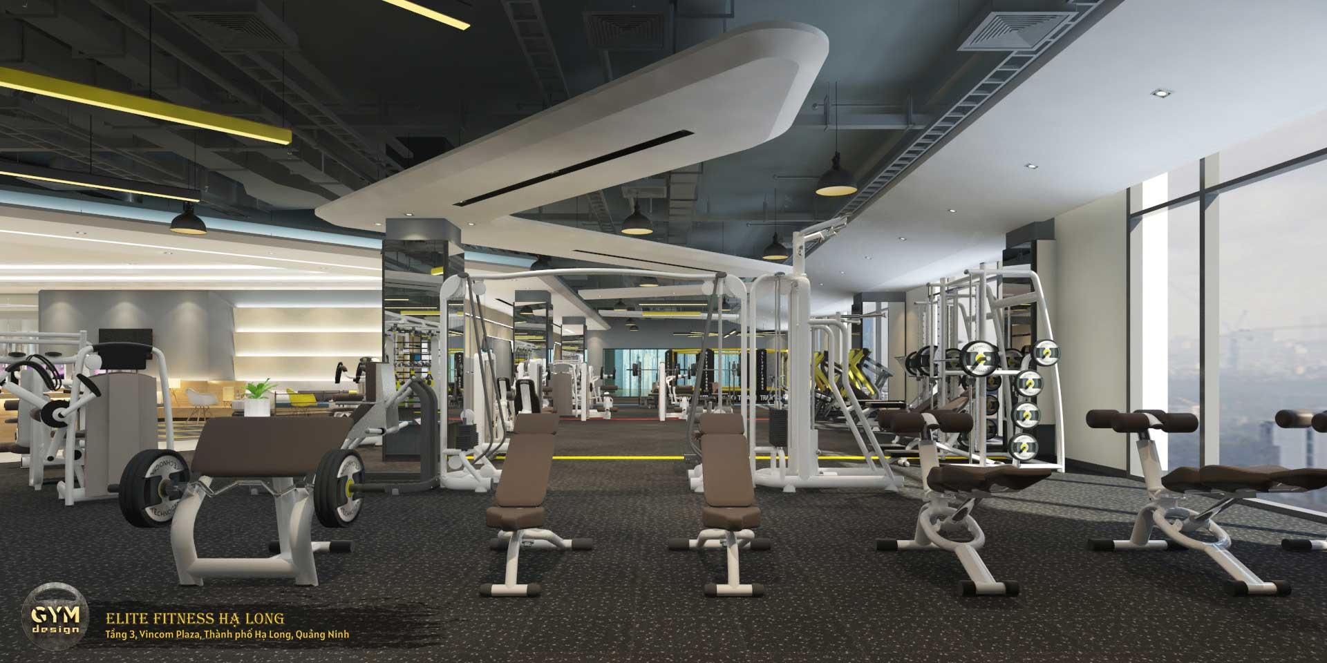 thiet-ke-phong-gym-elite-fitness-ha-long-14