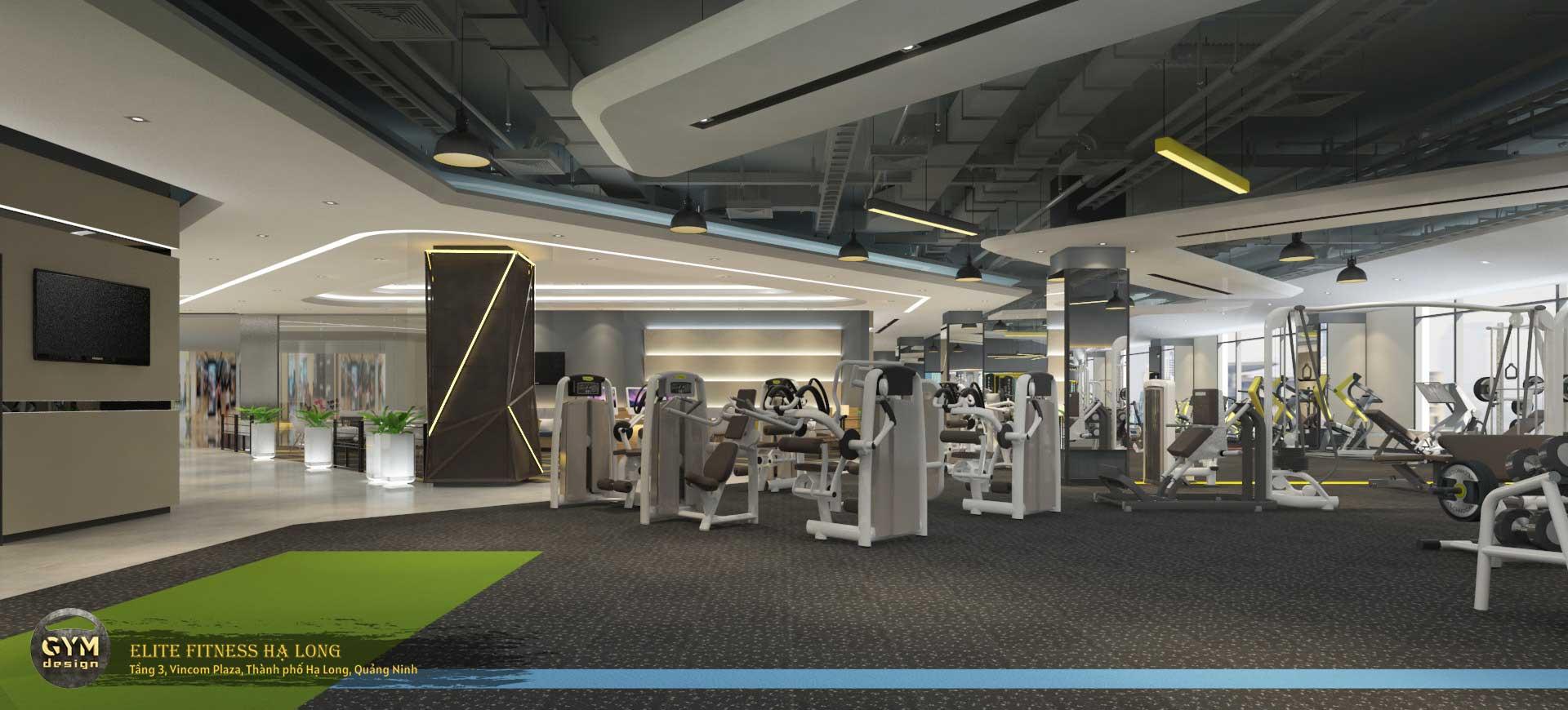 thiet-ke-phong-gym-elite-fitness-ha-long-17