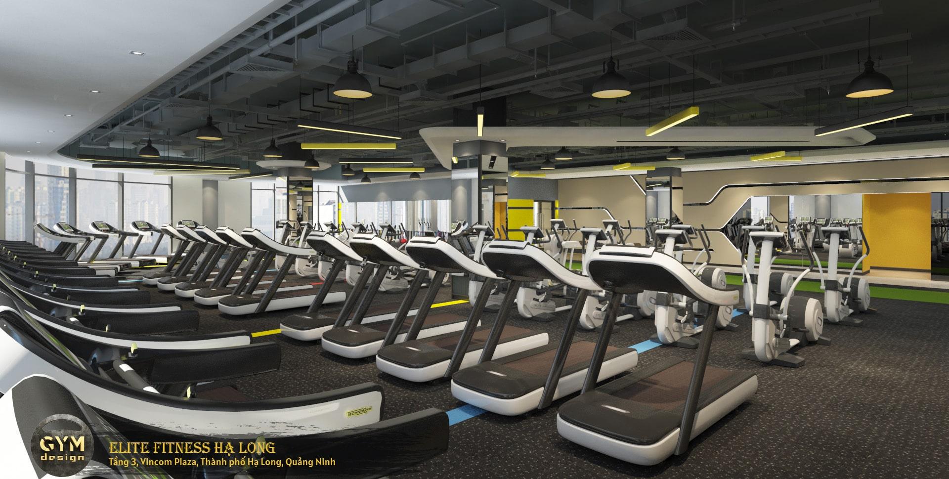 thiet-ke-phong-gym-elite-fitness-ha-long-41