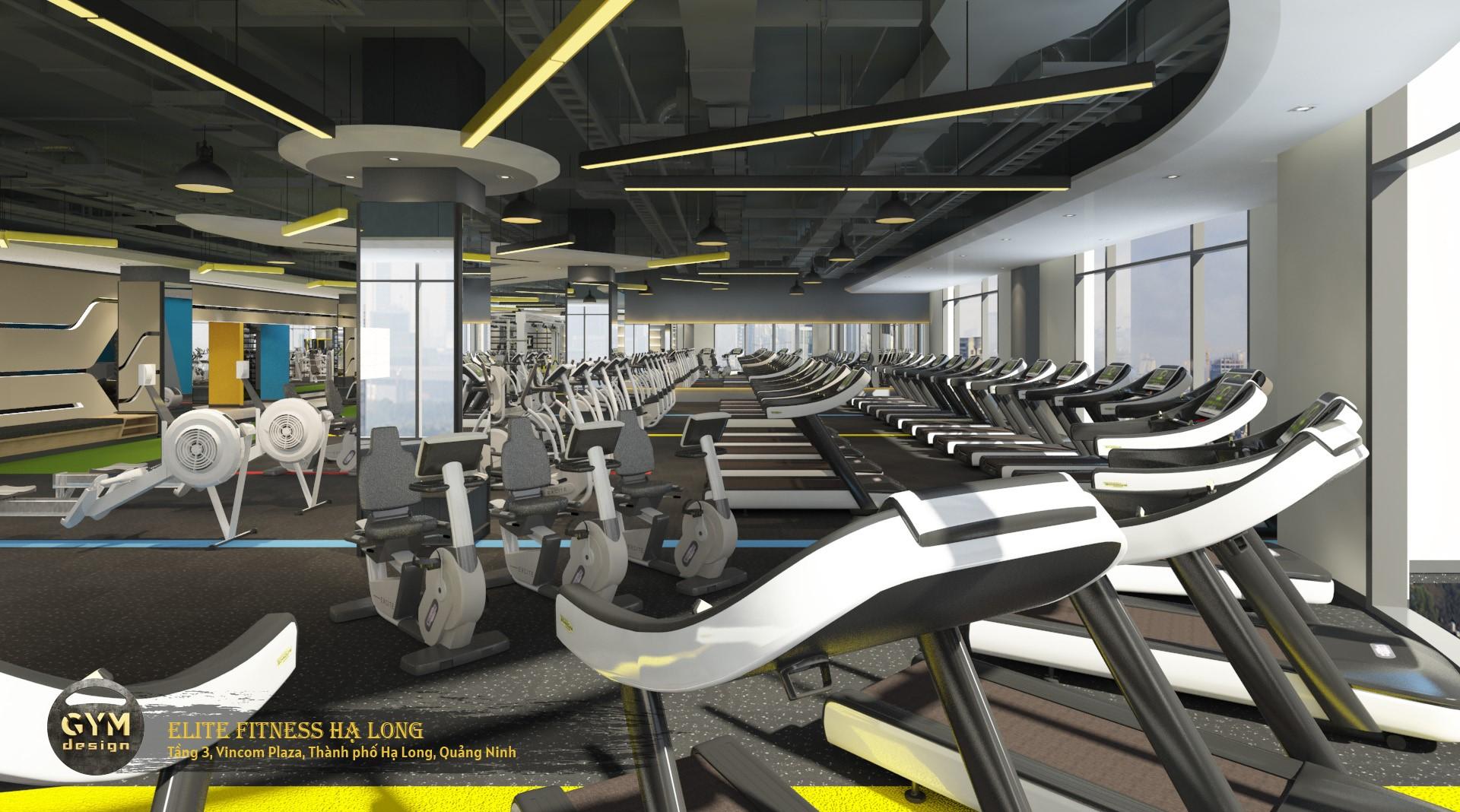 thiet-ke-phong-gym-elite-fitness-ha-long-43
