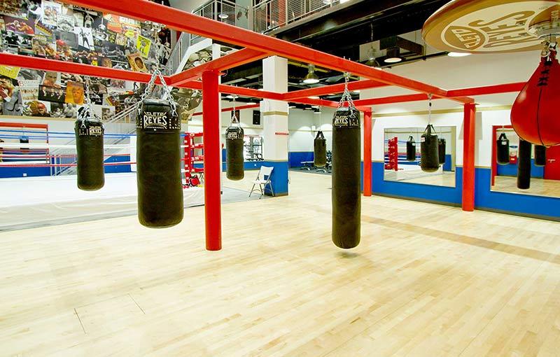 mẫu thiết kế phòng tập boxing đơn giản, tiết kiệm