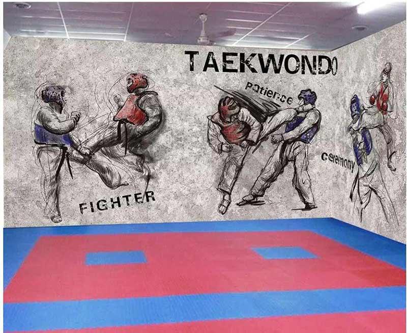 ve-tuong-phong-karatedo