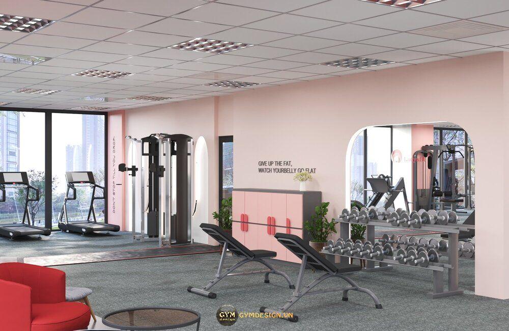 setup-phong-gym-nu